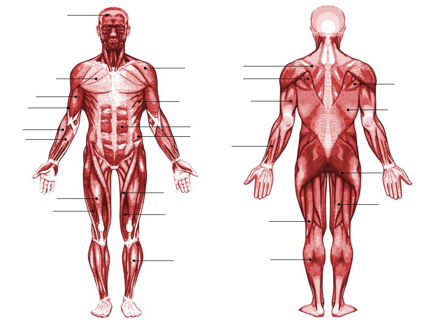 What Happens When These Body Parts Twitch?