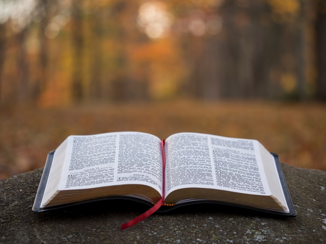 Funny Bible Verses